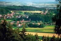 Falkenfels